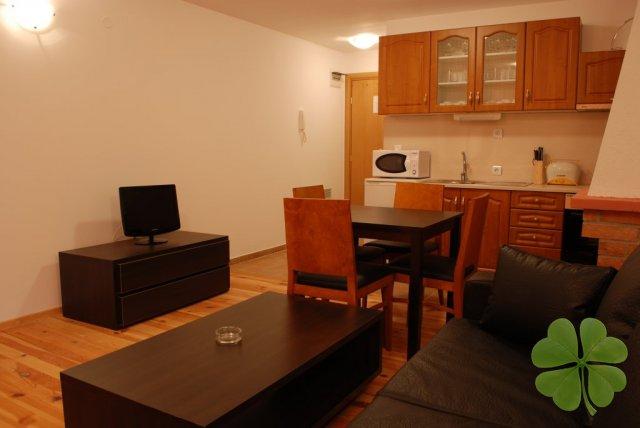 1 bedroom apartment for rent in Bansko